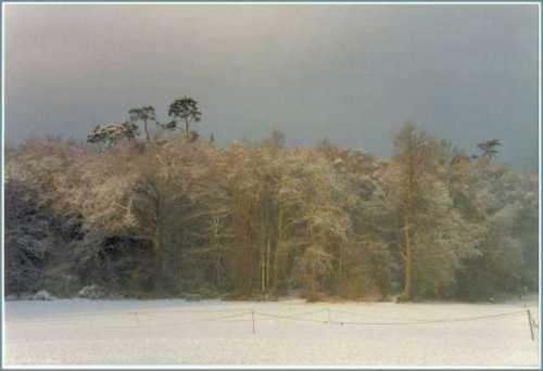 ottershaw-memorial-fields-surrey-snow.jpg