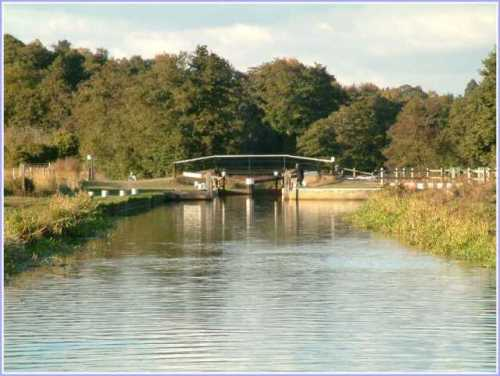 river-wey-st-catherines-lock-shalford.jpg