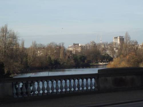 hyde-park-london-serpentine-bridge-and-view-to-paddington.jpg