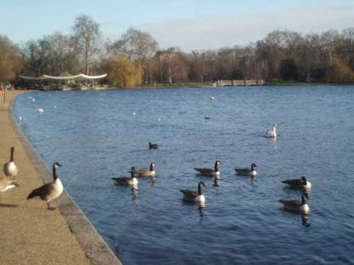 hyde-park-london-serpentine-cafe-bridge.jpg
