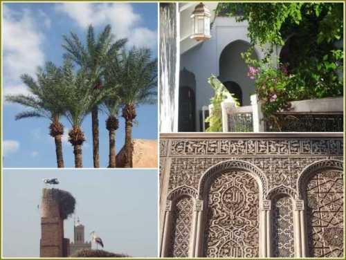 marrakech-storks-palms-riad-morocco.jpg