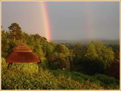rainbow-surrey-hills.jpg