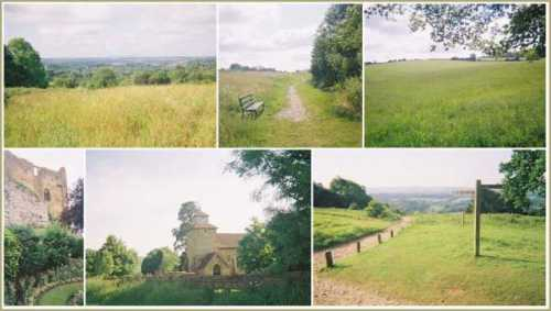 summer-north-downs-and-surrey-hills.jpg