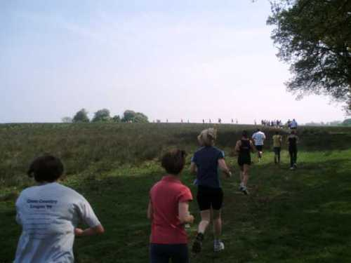 clandon-park-run-10-km-fields.jpg