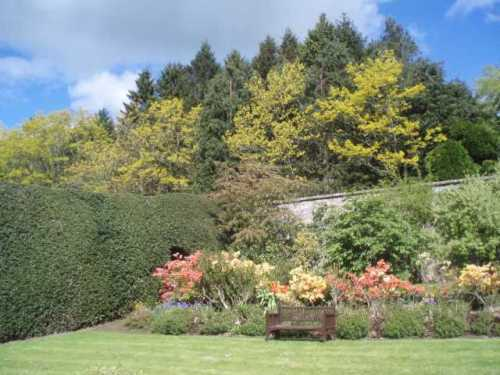pittodrie-house-aberdeenshire-walled-garden-trees