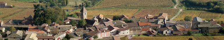 burgundy vineyards near roche solutre maconnais france by roadsofstone
