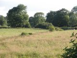 river arun summer meadows near rudgwick sussex england by roadsofstone